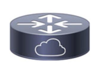 CSR1000v Icon