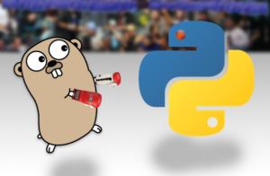 Python vs golang e1470416806915 300x196